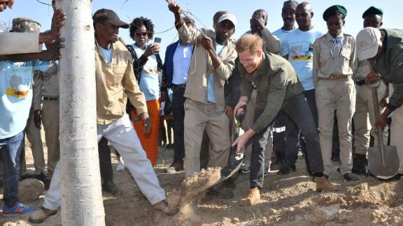 Prince Harry, Duke of Sussex, helps to plant trees on the banks of Botswana's Chobe River, on day four of his family's tour of Africa.