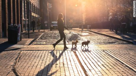 Dog-walking startup Wag raised $300 million to unleash growth. Then things got messy
