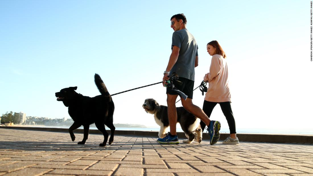 Pet owners who fail to walk their dogs daily face $2,700 fine in this Australian territory