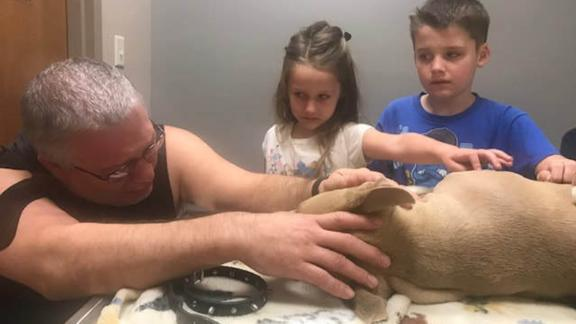 Gary Richardson and two of his children, Aurora, 6, and and Owen, 8, say goodbye to Zeus after he died protecting Oriley and Orion.