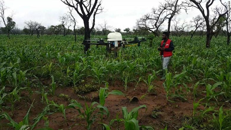Acquahmeyer's drones check leaf color and soil quality, producing reports on the crop's health.