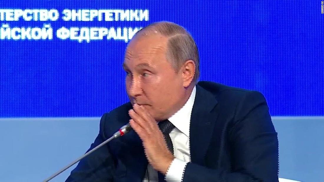 Putin jokes about interfering in 2020 elections