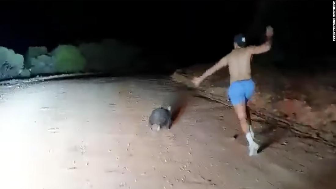 Empörung über video von australischen Polizisten Steinigung wombat