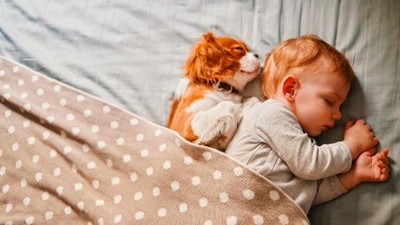 Exposing a child to animals during the first six months of life is linked to a reduced chance of asthma and allergies later in life. However, if an existing family member is allergic, having pets in the home can do more harm than good.