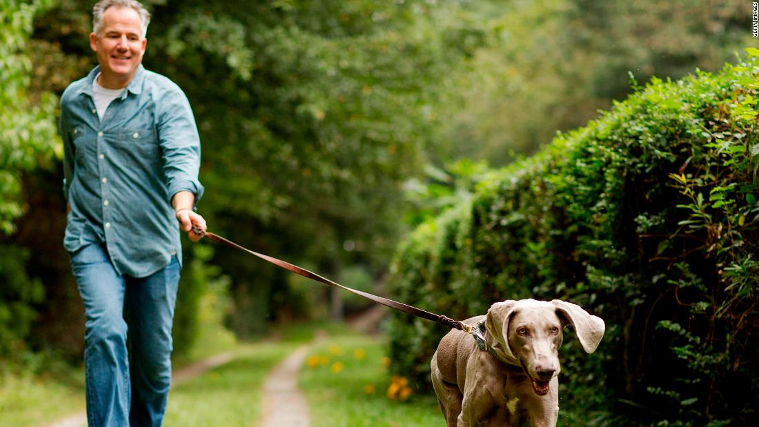 It's likely that the health benefits of dog ownership have to do with the amount of exercise needed to keep the furry friends healthy -- studies show dog owners can get 30 minutes more exercise a day than people who don't own dogs. Just who is rescuing whom here?