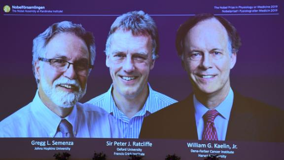 The winners of the 2019 Nobel Prize in Physiology or Medicine (L-R) Gregg Semenza of the US, Peter Ratcliffe of Britain and William Kaelin of the US appear on a screen during a press conference at the Karolinska Institute in Stockholm, Sweden, on October 7, 2019. - William Kaelin and Gregg Semenza of the US and Peter Ratcliffe of Britain win the 2019 Nobel Medicine Prize. (Photo by Jonathan NACKSTRAND / AFP) (Photo by JONATHAN NACKSTRAND/AFP via Getty Images)
