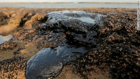 Environmental Minister Ricardo Salles said more than 100 tons of oil sludge has already been collected.