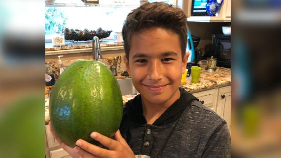 Lo'ihi Pokini holds his family's 5.6 pound avocado, which was just certified as the world's heaviest.