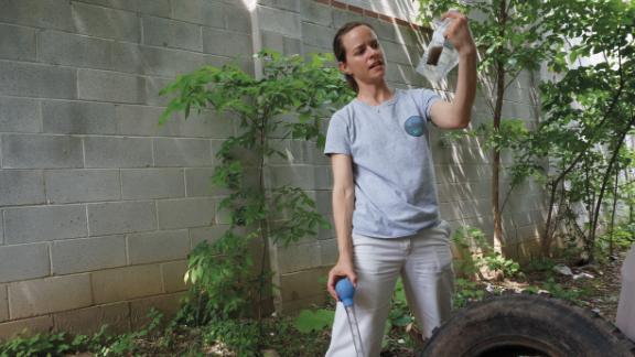 Disease ecologist Shannon LaDeau led the study investigating how socioeconomics influences mosquito-born disease risk.