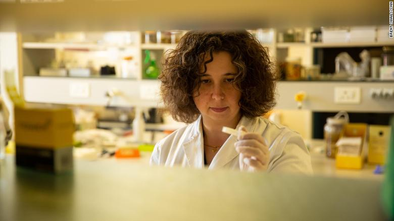 Marine biologist Sara Andreotti in the lab.