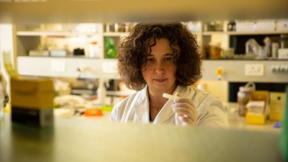 Marine biologist Sara Andreotti in the lab.