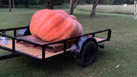 The pumpkin loaded on the trailer.