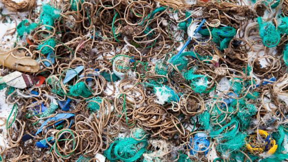 Elastic bands and fishing waste collected from Mullion Island.