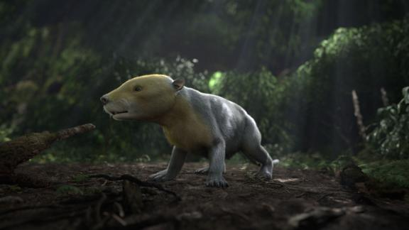 """This is a CGI rendering of the ancient Taeniolabis mammal. The rendering was taken from the PBS NOVA special """"Rise of the Mammals."""""""
