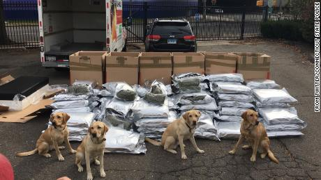 Dogs credited with busting two men in Connecticut with 420 lbs of marijuana