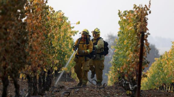 A team of firefighters put out a smoldering vine in Healdsburg.