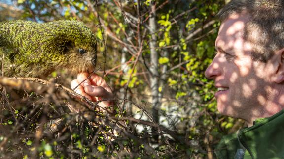 Andrew Digby has a chat with a kakapo.