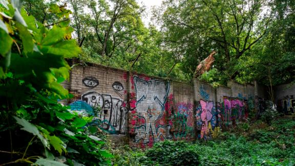 A graffiti-covered, overgrown segment of the original Berlin Wall, pictured in September 2019.