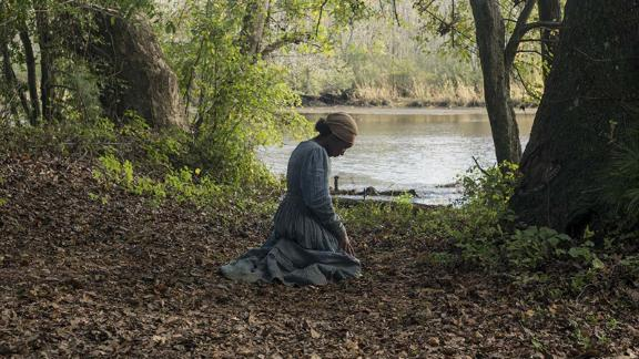 imdb blurb: The extraordinary tale of Harriet Tubman's escape from slavery and transformation into one of America's greatest heroes, whose courage, ingenuity, and tenacity freed hundreds of slaves and changed the course of history.