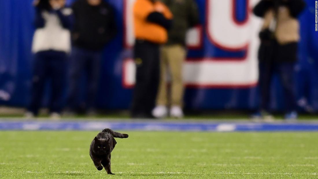 黒猫を簡単に止め、月曜日の夜はサッカー