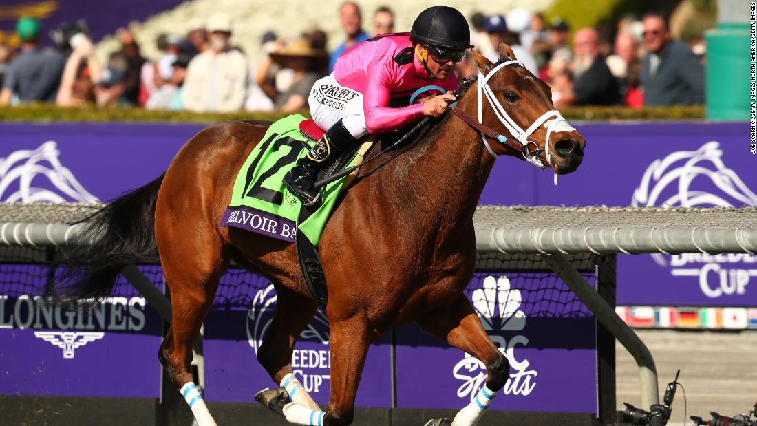 Vịnh Belvoir: Ngựa sống sót sau trận cháy rừng, lập kỷ lục tốc độ, được bán với giá 1,5 triệu USD