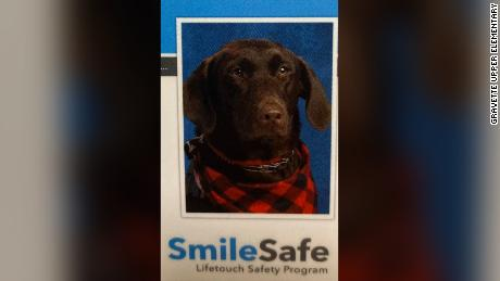 A very good service dog took her place in her Arkansas elementary school yearbook.