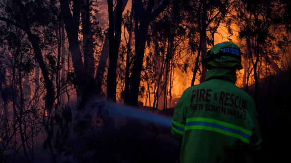 Firefighters try to put out a bushfire in Woodford on November 8.
