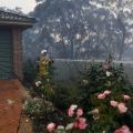 06 australia fire 1108 RESTRICTED