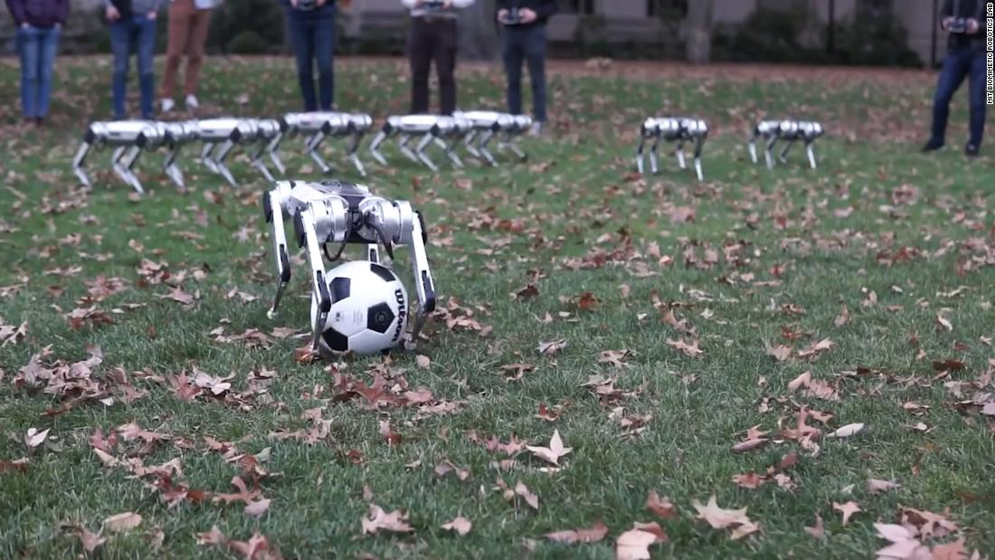 Watch these adorable robots frolic in leaves