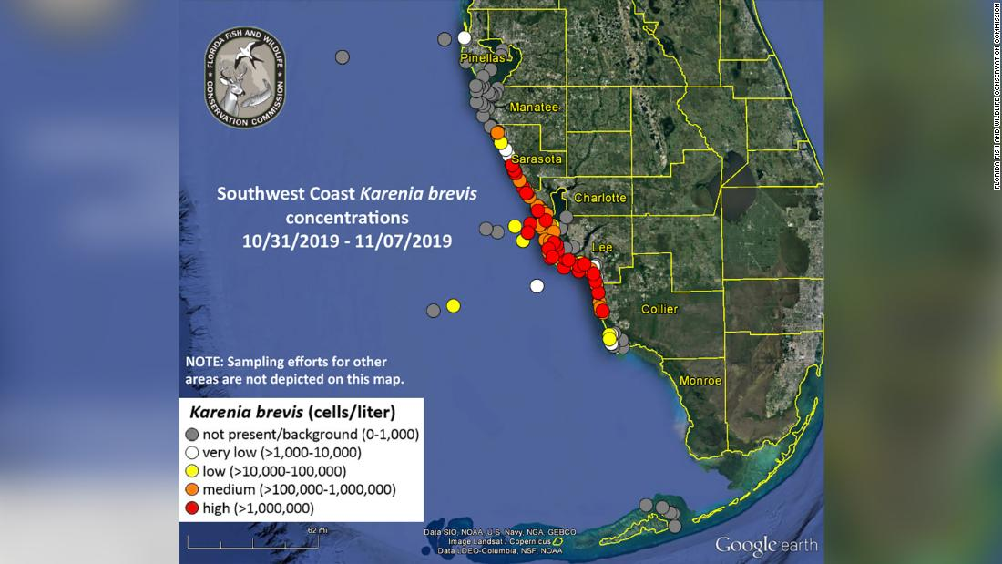 A map from the Florida Fish and Wildlife Conservation Commission published on November 8 shows the extent of the current red tide off Florida's southwest coast.