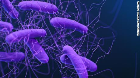 Clostridioides difficile or C. Diff is a bacteria that causes diarrhea and inflammation of the colon. Every year there 223,900 cases of infection and 12,800 deaths from the bacteria. The pathogen is listed as one of the CDC's five urgent threats to antibiotic resistance.