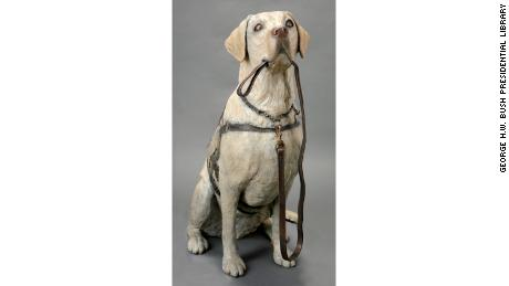 A statue of former President George H W  Bush's service dog
