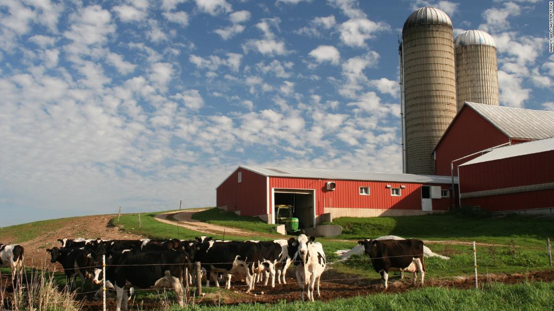 America ' s Milch-Industrie zu kämpfen hat