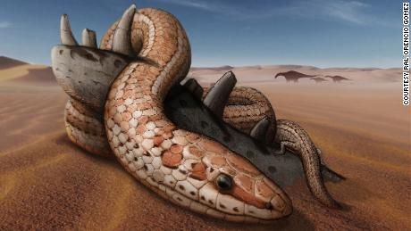 Snakes had hind legs for 70 million years before losing them, new fossil shows