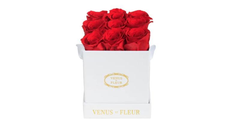 Venus et Fleur Le Mini Square
