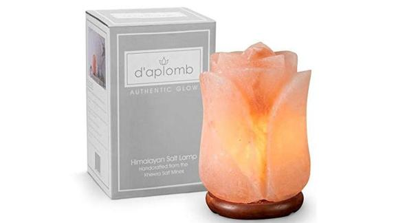 Hand Carved Flower Himalayan Salt Lamp ($34.99; amazon.com): Said to purify the air in a room by releasing negative ions, salt lamps have become one of the trendiest gifts. Casting a warm, pinkish glow, they