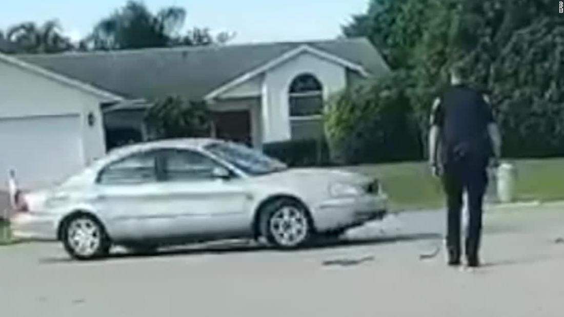 A Florida dog put a car into reverse and drove it in circles for nearly an hour