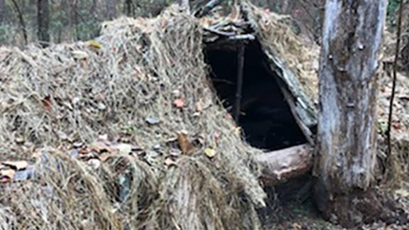 Authorities say an escaped inmate made this shelter from foliage around a fallen tree in Delaware.