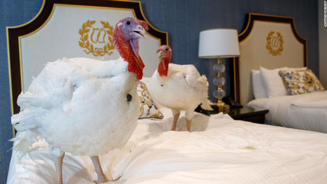 Trump spares turkey named 'Butter' with a Thanksgiving pardon