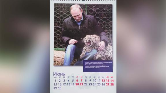 The 2020 calendars show Putin's softer side.