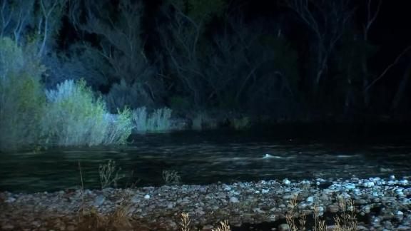 Four children and an adult escaped the car onto an island in the creek, authorities said.
