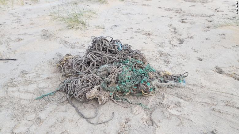 A necropsy found 220 pounds of debris in the whale's stomach, including sections of fishing nets.