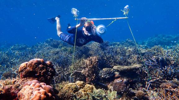 Researcher Tim Gordon deploys an underwater loudspeaker on a coral reef.
