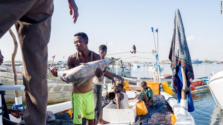 Somali fishermen landing fish in the harbour after a three day fishing trip at sea.