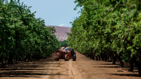 A worker sprays almond trees with pesticide at Del Bosque Farms Inc. in Firebaugh, California, U.S., on Monday, April 6, 2015. California lawmakers approved legislation sought by Governor Jerry Brown that authorizes spending $1 billion to manage the drought gripping the most populous U.S. state for a fourth year. Photographer: David Paul Morris/Bloomberg via Getty Images