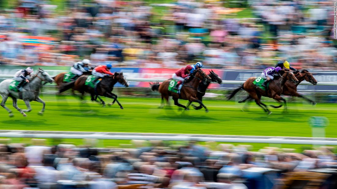 "This shutter pan picture was taken as racehorse Japan beat Crystal Ocean in the Juddmonte International. ""There is just this lovely, dramatic sense of speed in the picture. It sort of cleans up the picture without all the sponsors in the background,"" said Whitaker. <br />"
