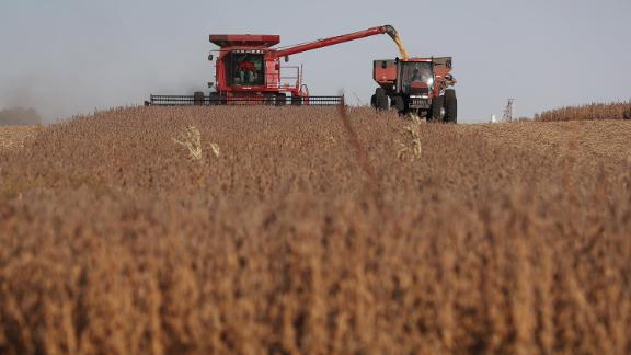 Soybeans are harvested in Rippey, Iowa in October 2019.