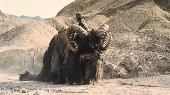 """Banthas are beasts of burden used by the sand people on Tatooine and other desert planets. In """"A New Hope,"""" the bantha was actually an elephant wearing a head mask, palm fronds and tubing."""