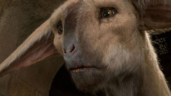 The fathiers are 14-foot tall, horse-like creatures with the face and movements of a lion. Although they're mainly CGI in the film, a puppet was used for close up shots to convey vulnerability and emotion.