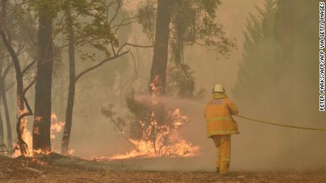 New South Wales declares state of emergency as Australia bushfires rage